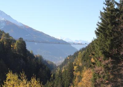 "Hängebrücke ""Goms Bridge"""