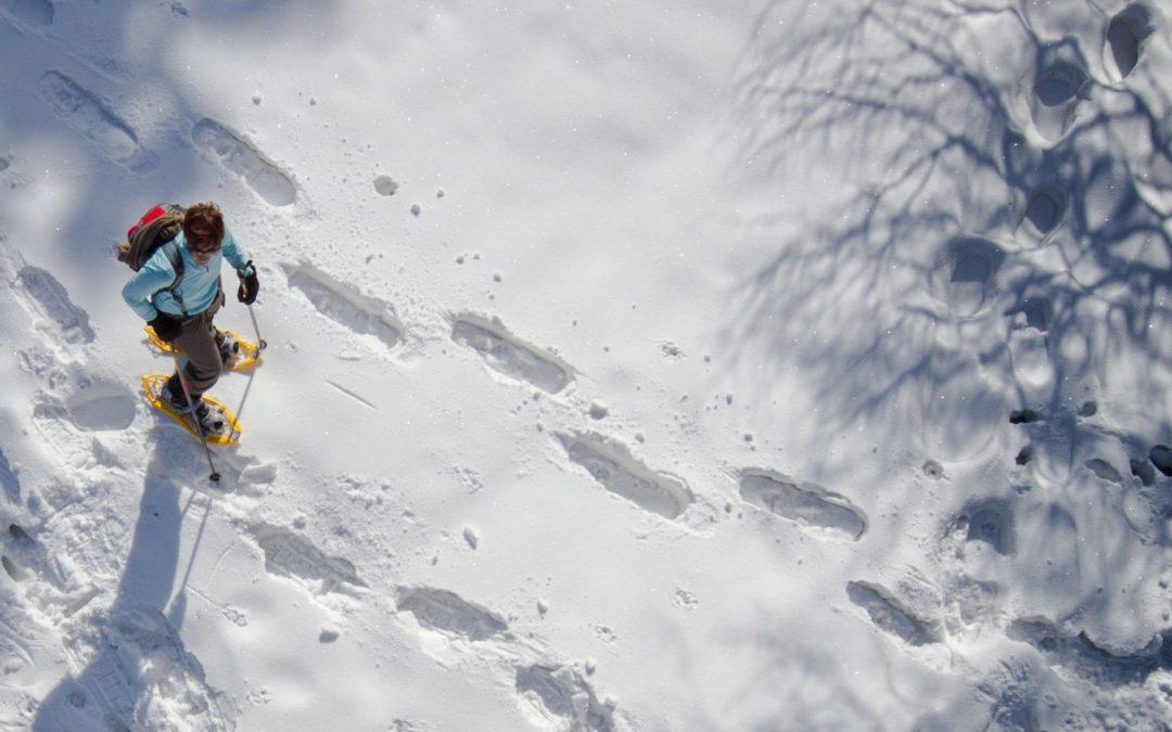 Winterwandern & Schneeschuhtrails